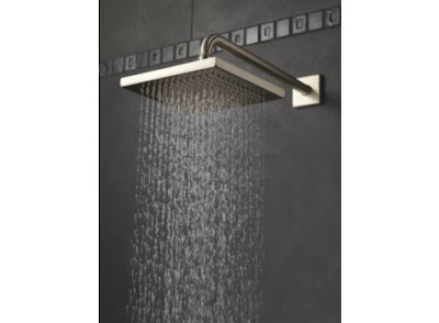Delta 57740 Arzo Touch-Clean Raincan Showerhead With Arm & Flange