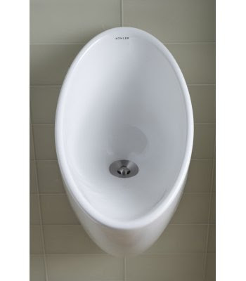 Kohler K-4917 Steward S Waterless Urinal
