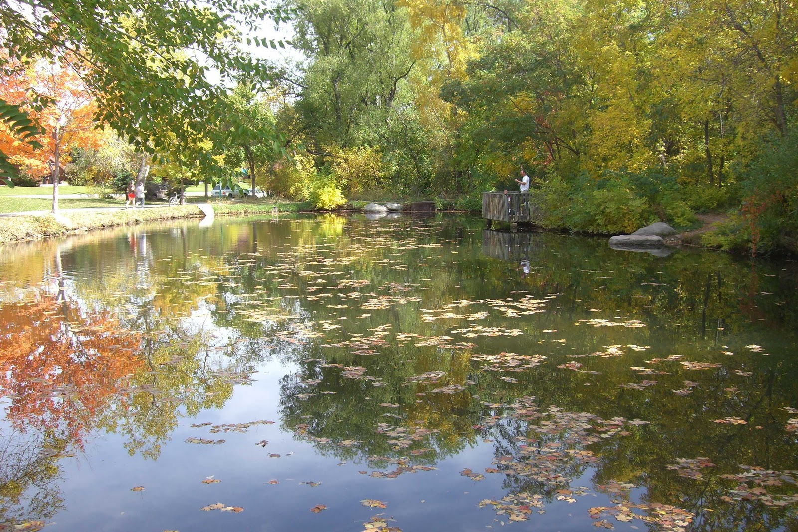 Wordless wednesday fall in boulder colorado college for Boulder creek fishing