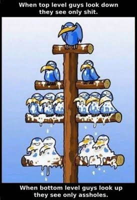crow-hierarchy-shit-falling-on-lower-workers