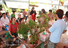 Educational Visit - Hydroponic Farm