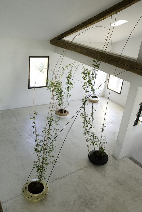 Tomas Alonso - Greenroom planter for climbing plants