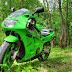 Un Ninja la iarba verde