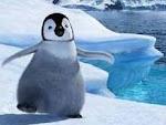 Chiquillas. en la Antartida.