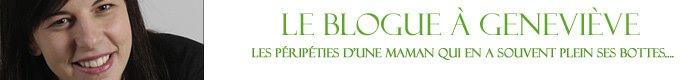 Le Blogue à Geneviève