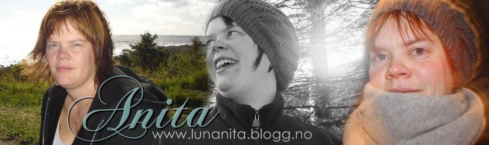 Anita sin blogg
