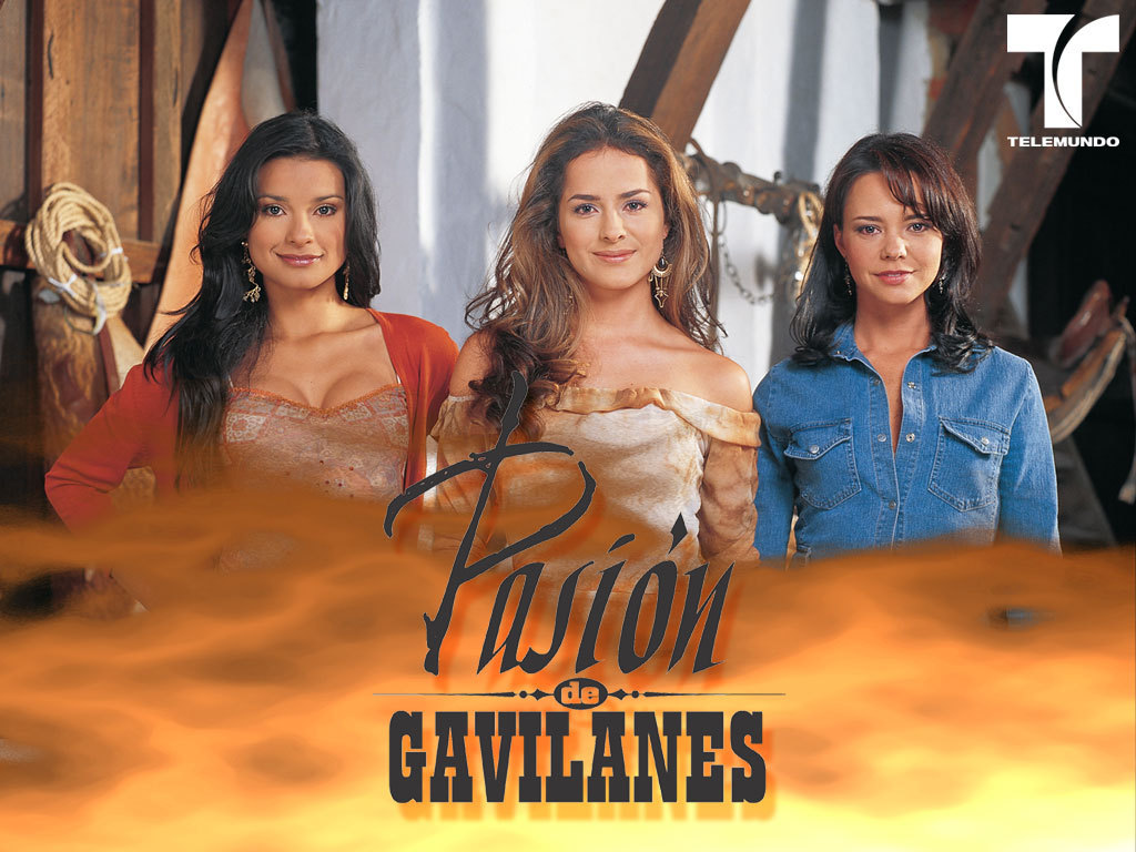 http://2.bp.blogspot.com/_q01LKHssZCc/TDwy8VXmYEI/AAAAAAAABnw/Y2yREXjAKlQ/s1600/Pasion-de-Gavilanes-telenovelas-4411665-1024-768%5B1%5D.jpg