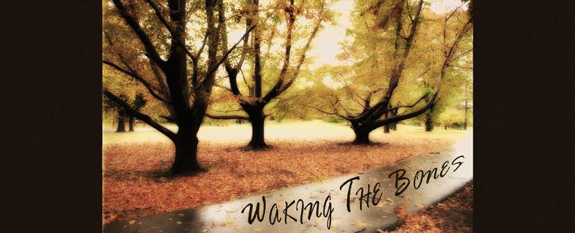 Waking The Bones