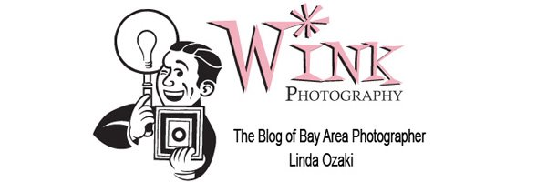Wink Photography
