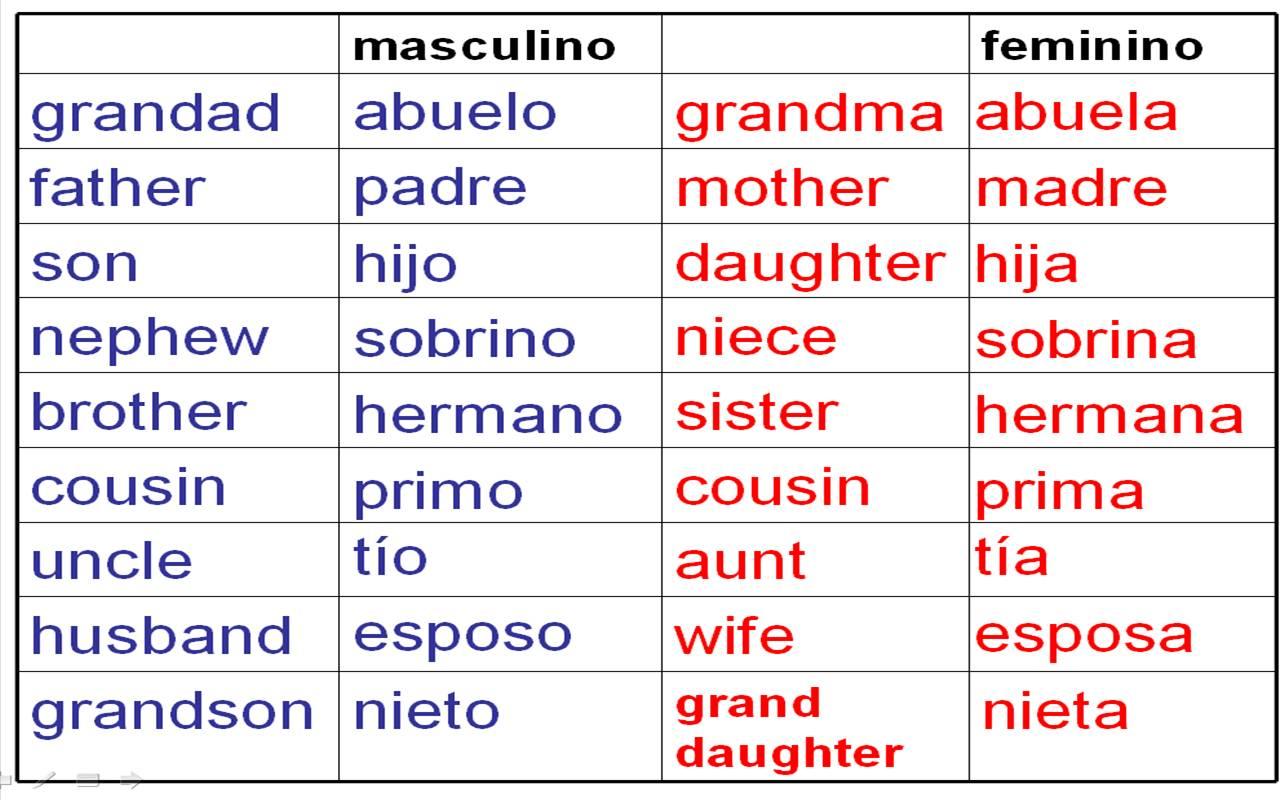 essay vocab spanish
