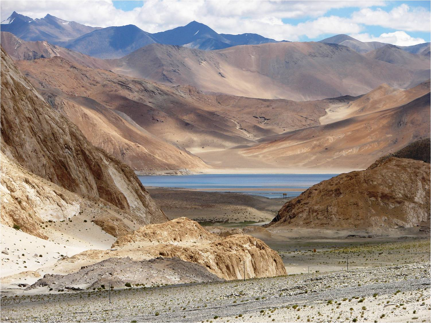 Ladakh is this vast expanse of barren land that is absolutely charming ...