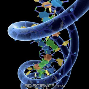 science and ethics essay Ethics in science home page contains links to on-line resources, a bibliography, and several original essays on ethics and misconduct in science maintained by prof.