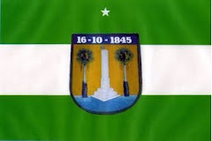 BANDEIRA MUNICIPAL DE ASSU