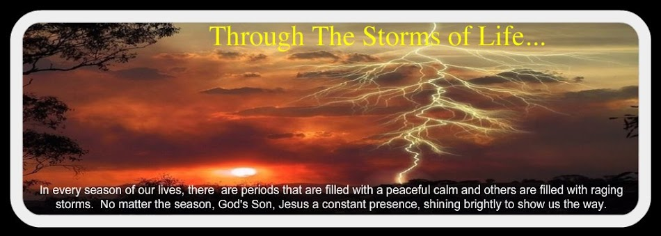 Through The Storms of Life...