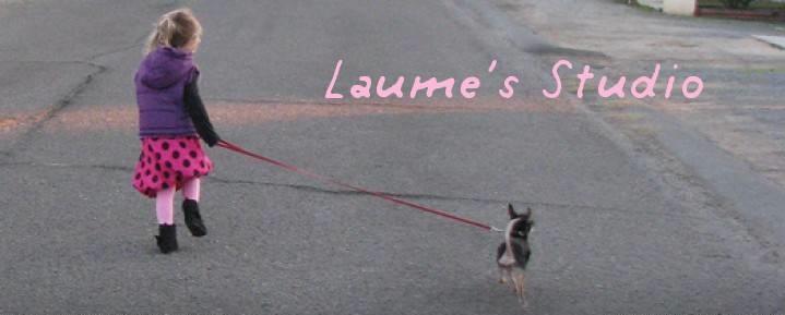 Laume's Studio