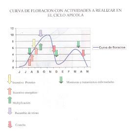 CURVA DE FLORACION
