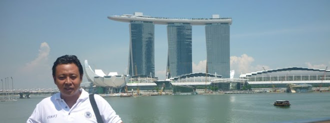 view marina bay