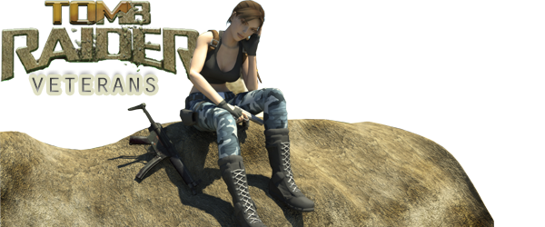 Tomb Raider Veterans