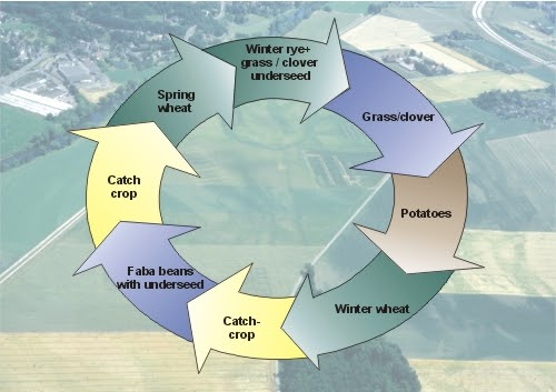 crop rotation in india pdf