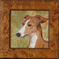 Treasured Moment - Italian Greyhound