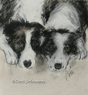 Border Collie - On The Border By Cori Solomon