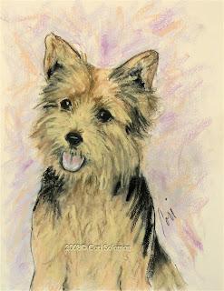 Soulmate - Norwich Terrier by Cori Solomon