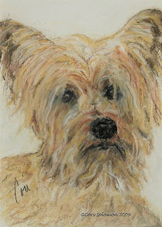 Wonder-ful - Terrier Art By Cori Solomon