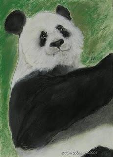 Panda- White Cloud By Cori Solomon