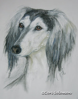 Saluki - Fantasy's Favorite By Cori Solomon