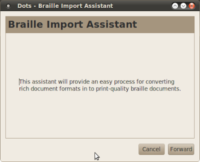 Dots braille typesetting program import assistant dialog