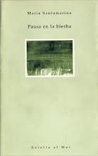 PAUSA EN LA HIERBA - 1999