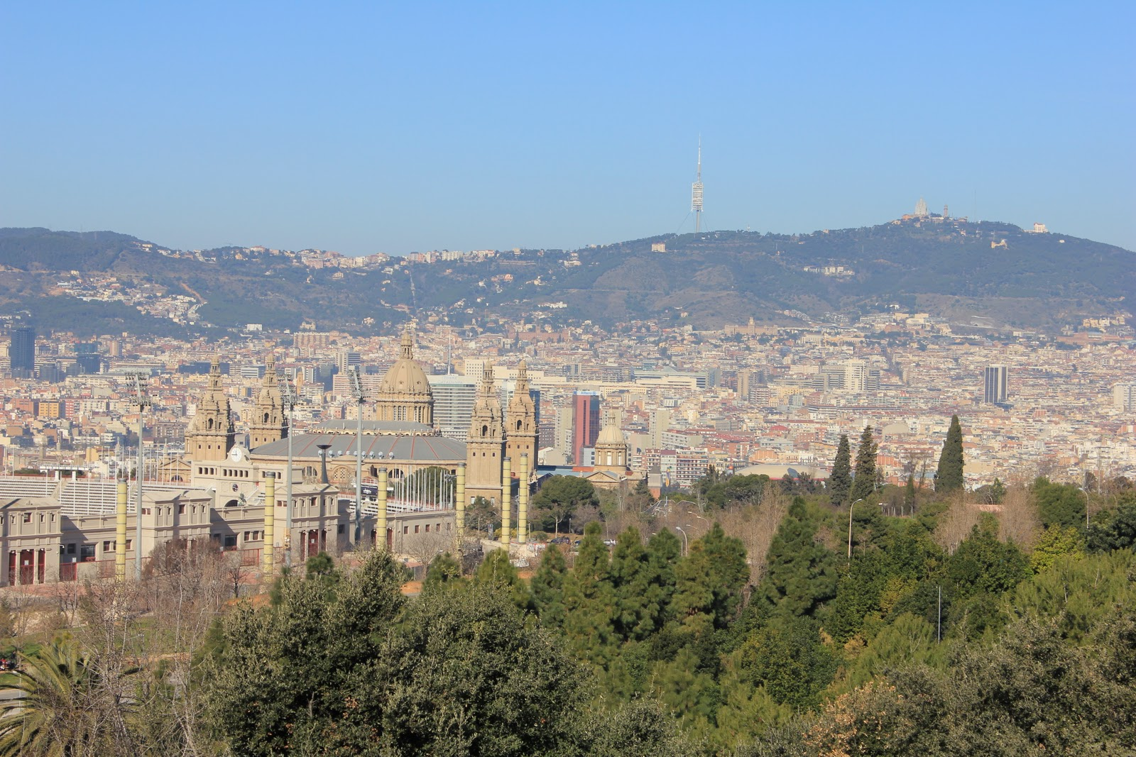 Tendre et coquette el jard n bot nico de barcelona for Jardin botanico montjuic