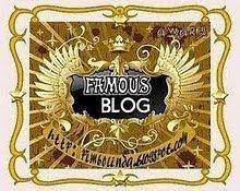 Un famoso blog
