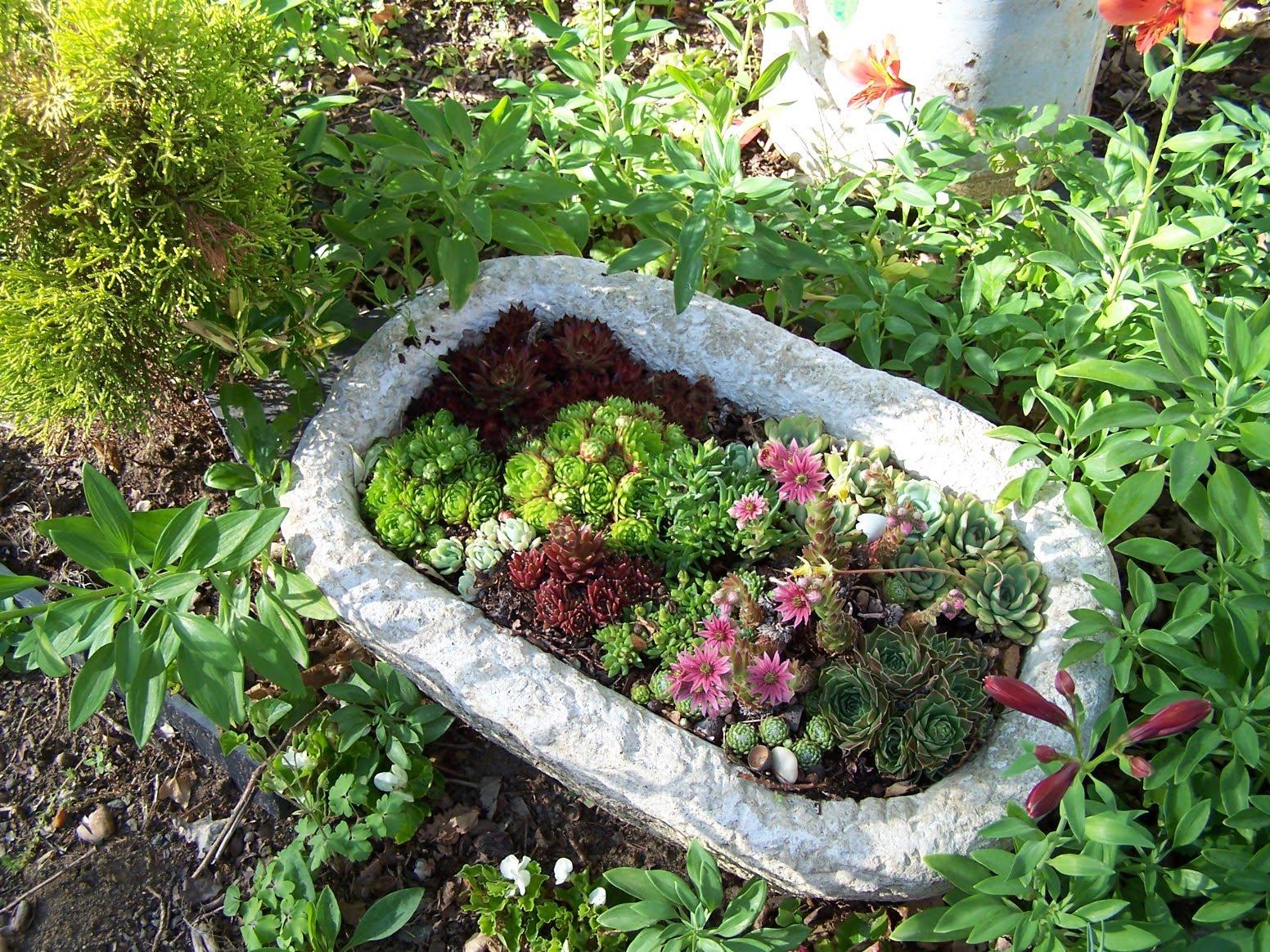 bienvenue dans mon jardin a fill sur sarthe potees fleuries et jardinieres. Black Bedroom Furniture Sets. Home Design Ideas