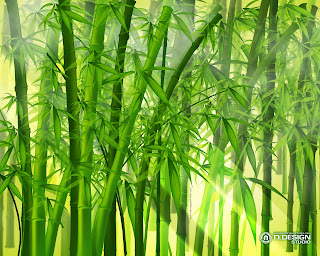 Bambu proceso para la reproducci n de plantas - Reproduccion del bambu ...