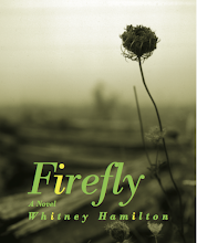 Firefly - a Civil War novel