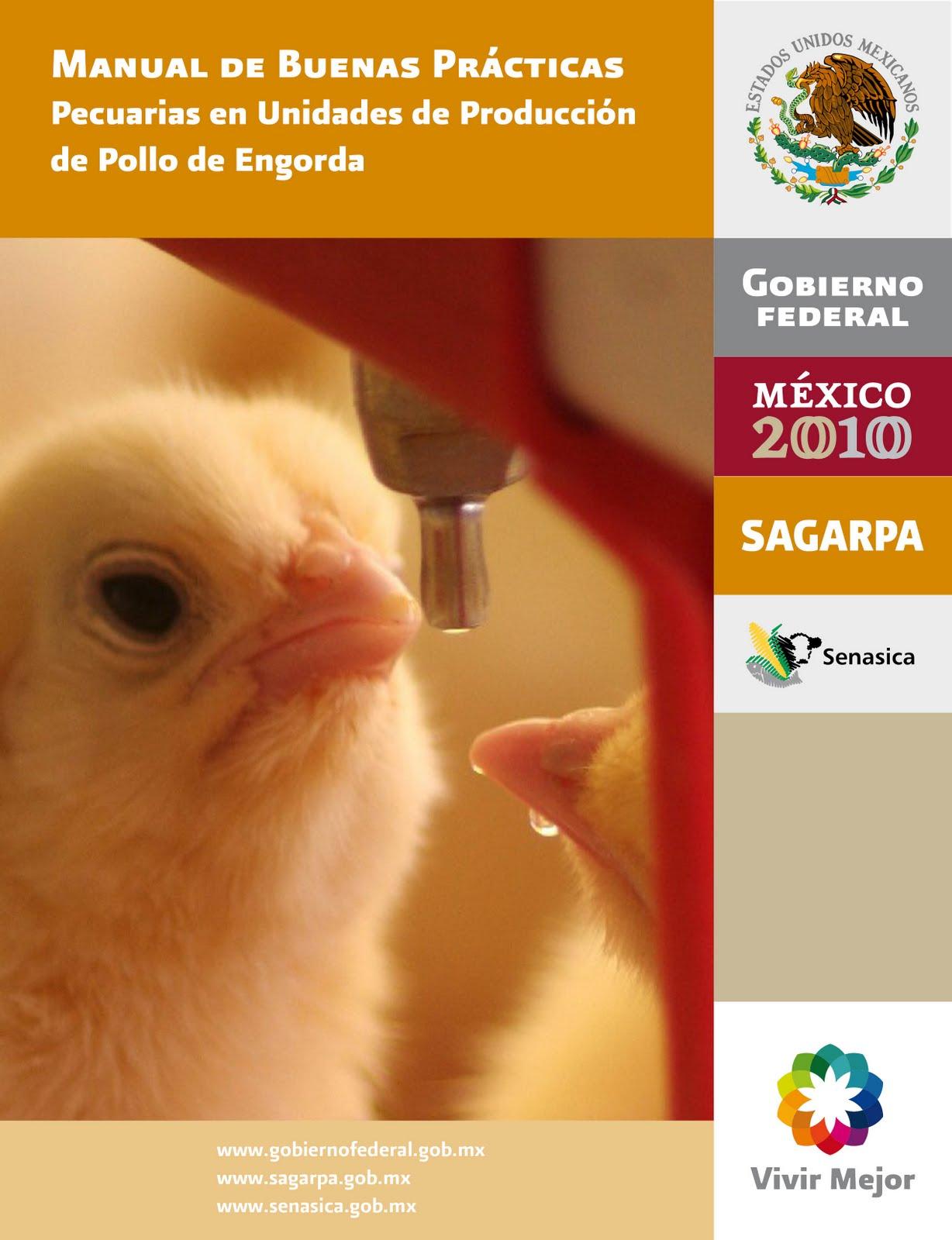 Hades manual buenas pr cticas pecuarias pollo engorda esp Manual de buenas practicas de manufactura pdf