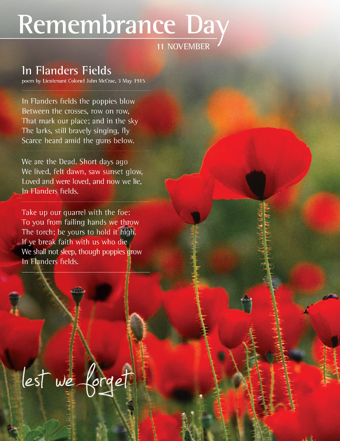 Memorial day poems veterans poems prayers - Inspiring