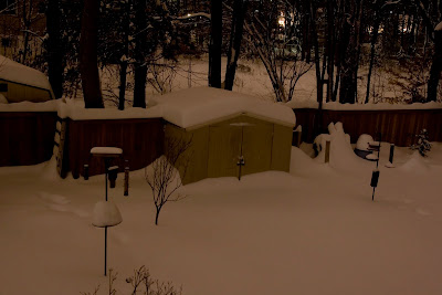 A long-exposure shot of the back yard at 11:00pm on day 2 of the snowstorm