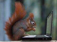 """""""Blogueando"""""""