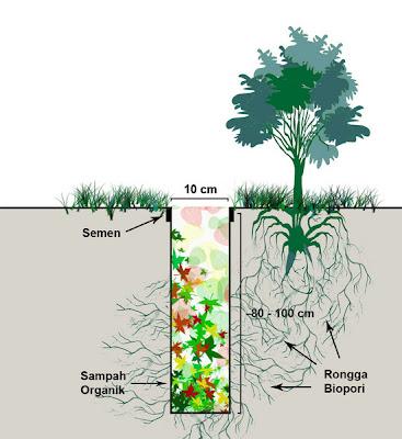 Pengertian Biopori & Cara Membuat Lubang Resapan Biopori Air (LRB