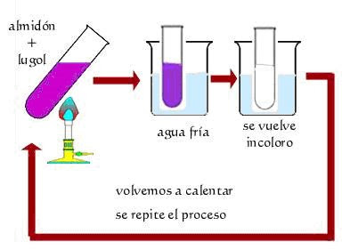 MANUAL Y PRCTICAS DE LABORATORIO BIOLOGA