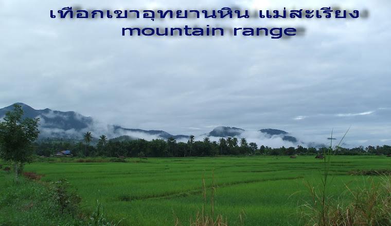 เทือกเขา อุทยานหิน แม่สะเรียง