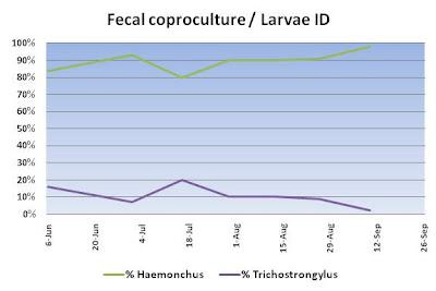 Fecal coproculture / larvae ID