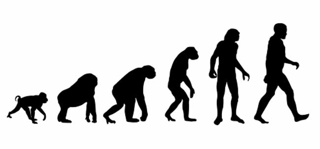 human evolution myth or fact essay Fact, fancy, and myth on human evolutioni and attitudes toward human evolution a total of 2,i00 anonymous responses from students attending 4i us.
