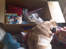 Walter loves loot! Care packages are the BEST!