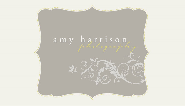 amy harrison photography