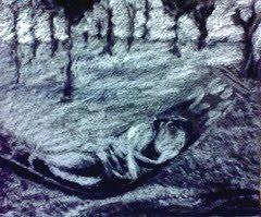 [artwork.hayahay+sketch2]