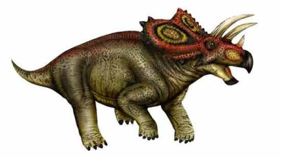 coahuilaceratops 10 Dinosaurus Bertanduk Paling Menakjubkan