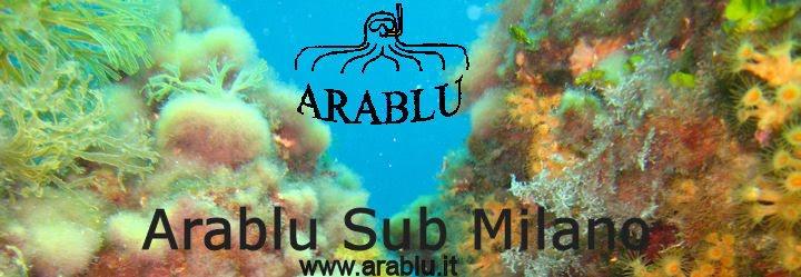 Arablu Sub Milano